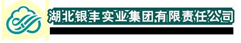 湖北銀豐實業(ye)集團有(you)限責任(ren)公(gong)司